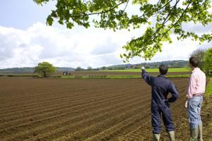 PO żąda od ministra rolnictwa, aby zajął się sprawami rolników
