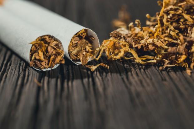 Wiceszef KAS: Problemem branży tytoniowej jest nielegalna produkcja w kraju