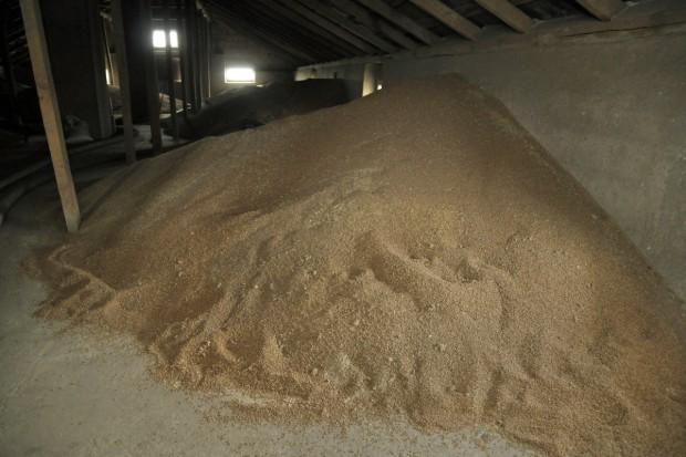 IERIGŻ: Warunki pogodowe nieznacznie ograniczą zbiory zbóż w tym roku