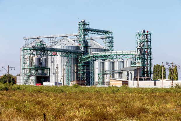 Ukraińska Grupa Rolnicza IMC zapowiada ekspansję