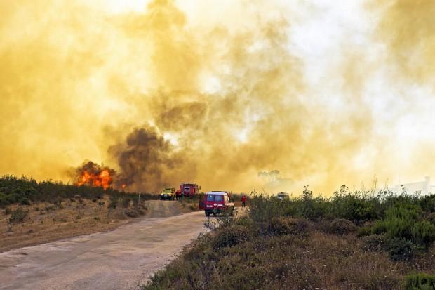 Portugalia: Już 43 ofiary śmiertelne pożarów lasów