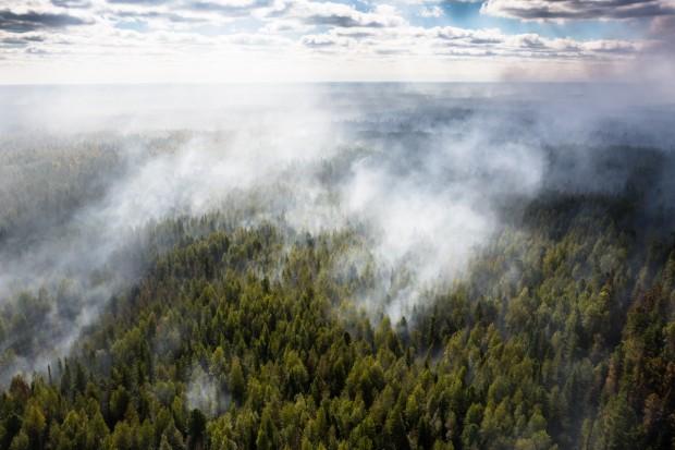 Płoną tysiące hektarów lasów na Syberii