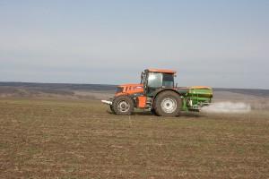 Wapnowanie gleb a nawożenie magnezem