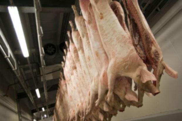 UE: Spadek eksportu wieprzowiny do Chin