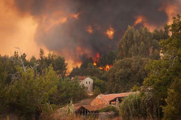 Włochy; W tydzień pożary pochłonęły taki obszar, jak w całym 2016 r.