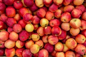 Białoruś: Ujawniono ponad 20 firm, które reeksportowały polskie jabłka