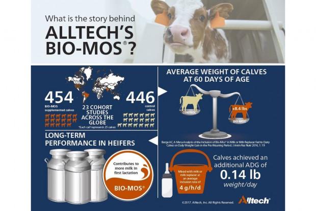 Badania wykazują, że Bio-Mos plus mleko to większe dzienne przyrosty cieląt oraz więcej mleka w pierwszej laktacji
