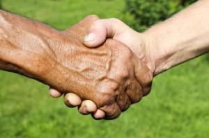 MRiRW: Bez współpracy z rolnikami nie da się zwalczyć ASF