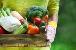 Francja: Rolnictwo ekologiczne ofiarą własnego sukcesu?