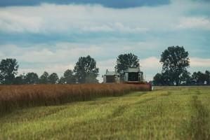 Skup Płodów Rolnych PROCAM