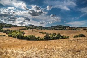 Ważne zmiany w programach rolno-środowiskowo-klimatycznych z PROW