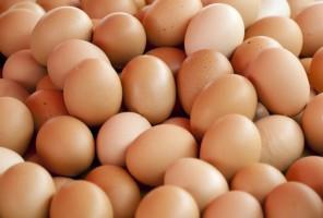 Holenderskie jaja skażone insektycydem