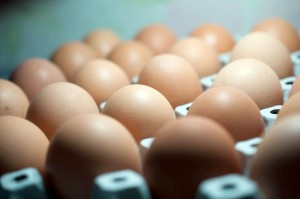 Niemcy: Sklepy Aldi wycofują ze sprzedaży wszystkie jajka