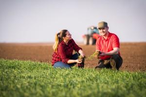 Wsparcie dla młodych rolników jest słabo ukierunkowane?