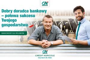 Kredyt obrotowy w rachunku bieżącym – oferta Agro