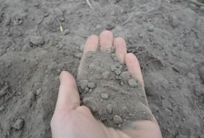 Okres pożniwny – czas analiz gleby