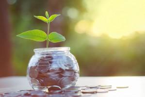 MRiRW: Jest zgoda KE na 70 proc. zaliczki dopłat bezpośrednich