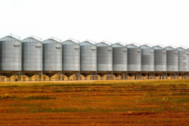 Rosja: Minister rolnictwa nie wyklucza nowego rekordu w eksporcie zbóż
