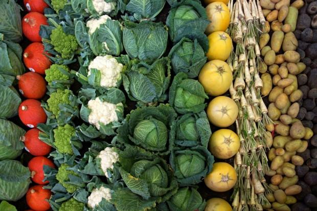Maroko, Turcja i Egipt zwiększają eksport warzyw do UE