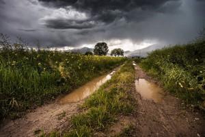 100 mln zł na pomoc dla poszkodowanych przez zjawiska atmosferyczne