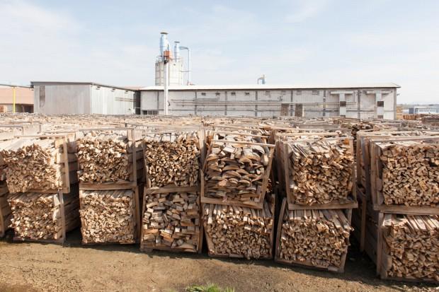 Przemysł drzewny: Przerobimy każdy metr sześc. drewna po nawałnicach