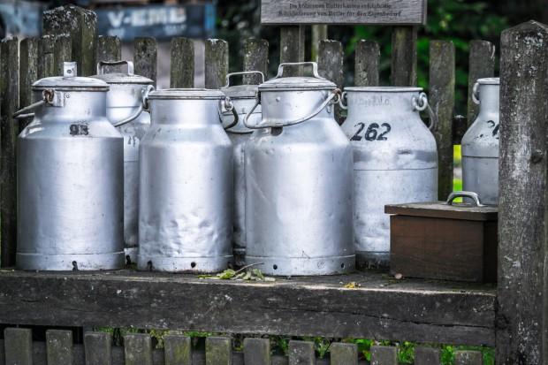 Kolejny sierpniowy spadek cen produktów mlecznych