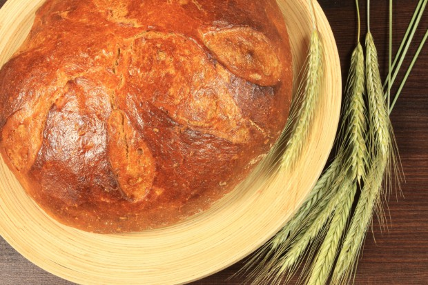 Bogdaniec zaprasza na Lubuskie Święto Chleba