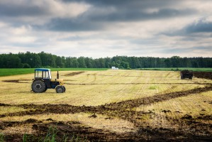 Rusza Krajowy Ośrodek Wsparcia Rolnictwa