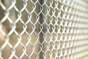 Jurgiel: Koszt ogrodzenia zapobiegającego migracji dzików to 130 mln zł