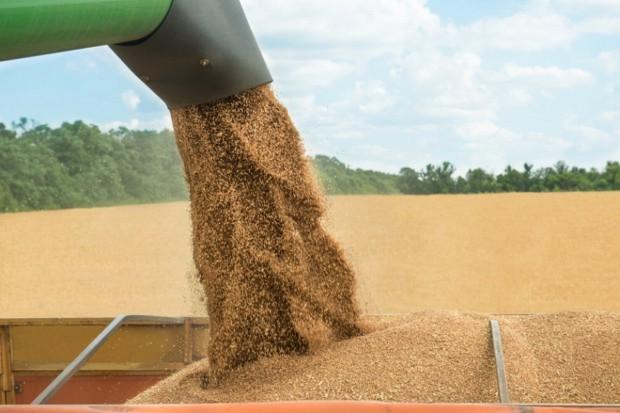 USDA o produkcji zbóż w Polsce w sezonie 2017/2018