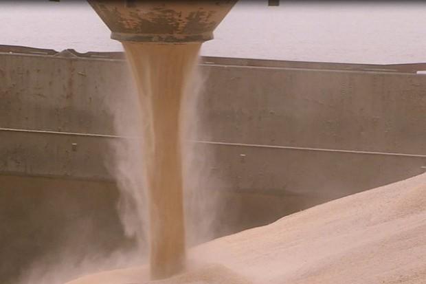 Ukraina spodziewa się mniejszego eksportu zbóż w sezonie 2017/2018