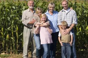 W 2016 r. rolnik nadal najbiedniejszy w kraju - ratuje go 500 +