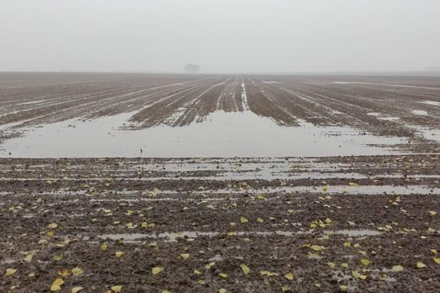 Pogoda rolników nie rozpieszcza