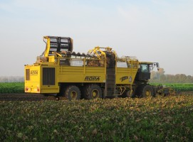 KE: Prognoza plonów najważniejszych roślin uprawnych w UE