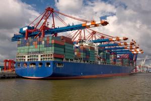 FAO: Światowe zużycie i handel zbożem coraz większe