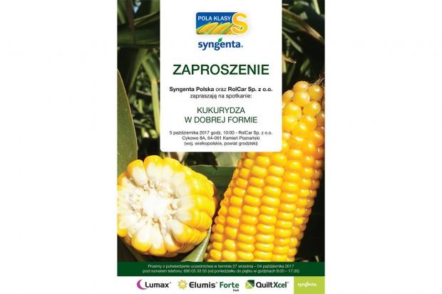 Nie przegap spotkania kukurydzianego 5 października w Cykowie. Oceń kolekcje, zobacz wyniki plonowania i jesienne doświadczenie herbicydowe