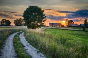 ARiMR przyjmuje wnioski o dotacje do inwestycji na terenach Natura 2000