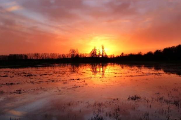 Zapobieganie ASF i powodziom z dofinansowaniem z PROW