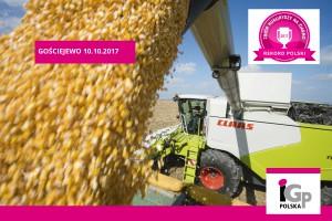 Codigip - Rekord Polski w plonie kukurydzy na ziarno