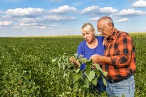 PSL chce obniżenia wieku emerytalnego dla rolników