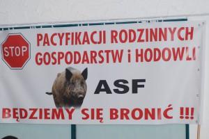 ASF - problem rolników na wschodzie Polski i ostra dyskusja w Białej Podlaskiej