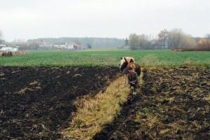100 lat temu jeden rolnik był w stanie wyżywić 4 osoby, a dziś żywi średnio 129