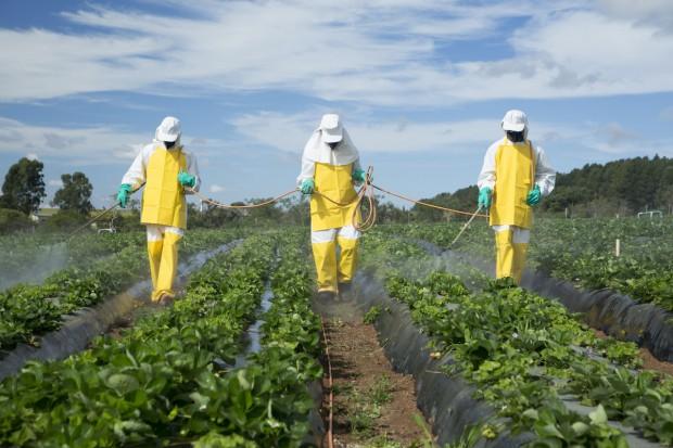 Pestycydy z owoców i warzyw utrudniają leczenie niepłodności