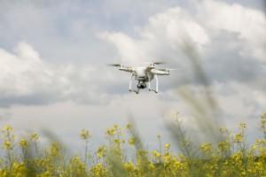 Czy w przyszłości drony zastąpią opryskiwacze?