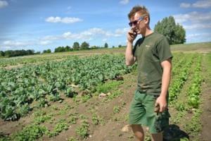UE: Rozwija się rolnictwo ekologiczne