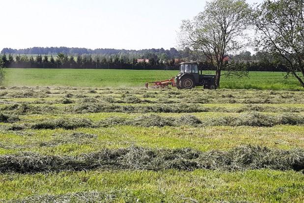 Zwalczanie chwastów na użytkach zielonych