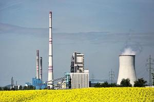 Biopaliwa poprawiają sytuację rolników