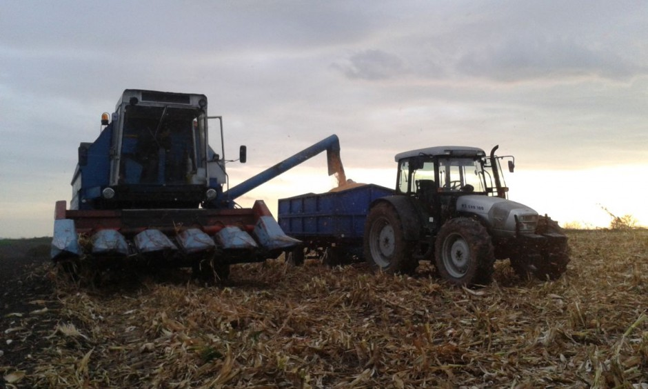 Po porannych opadach deszczu późnym popołudniem udało się zacząć koszenie. Nasi bohaterowie mieli w tym roku do zbioru 15 ha kukurydzy.