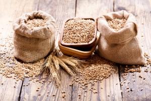 Izba Zbożowo-Paszowa: Mała podaż zbóż