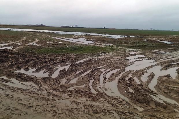 Przeciwdziałać niszczeniu struktury gleby